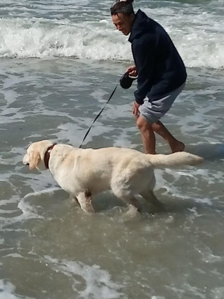 Titi découvre les vagues... Ça change du mistral !